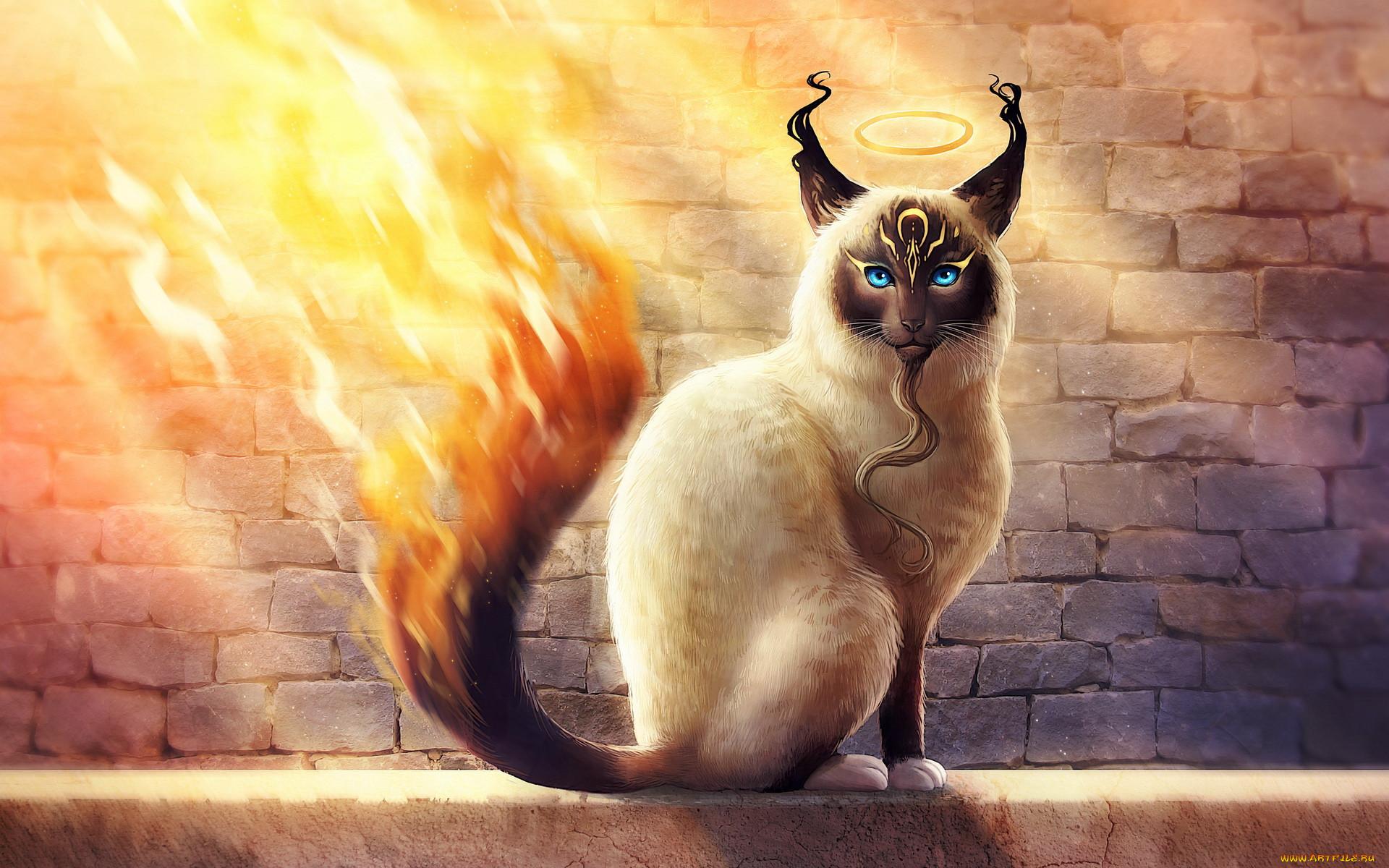 мифические существа коты кашу